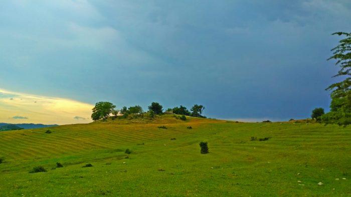 Зеленое поле Псахо