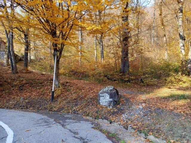 Камень около базы отдыха министерства обороны Красная Поляна