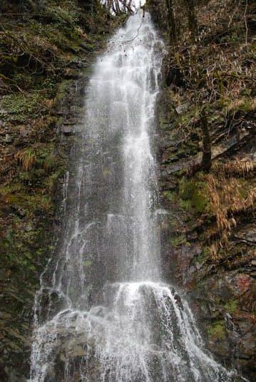 фото водопада Девичьи Слезы зимой Красная Поляна