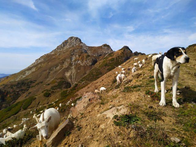 Фото вершины Аибга 3